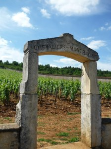 Chevalier Montrachet - one of my favourites