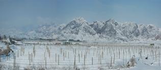 Ningxia snow